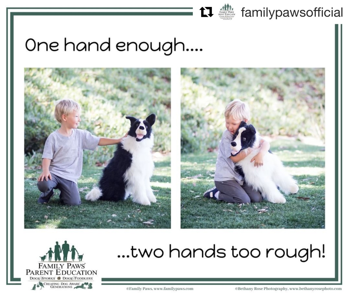 Family Paws One Hand